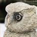Owl75-x-75