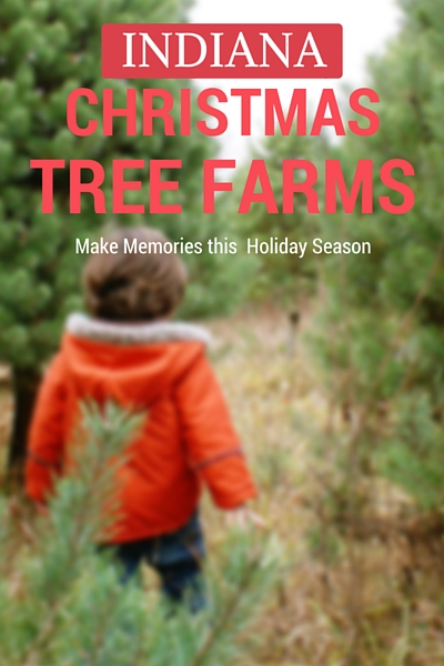 Christmas Tree Farms in Indiana