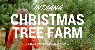 List of Indiana Christmas Tree Farms
