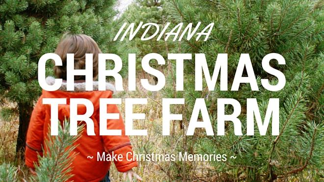 Christmas Tree Farms in Indiana – littleindiana.com