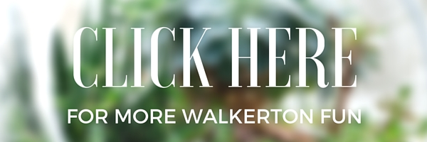 Things to Do in Walkerton, Indiana