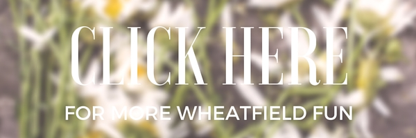 Things to Do in Wheatfield, Indiana