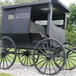 Nappanee, Indiana: Amish Buggy