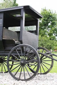 Nappanee, Indiana: Amish Horse and Buggy