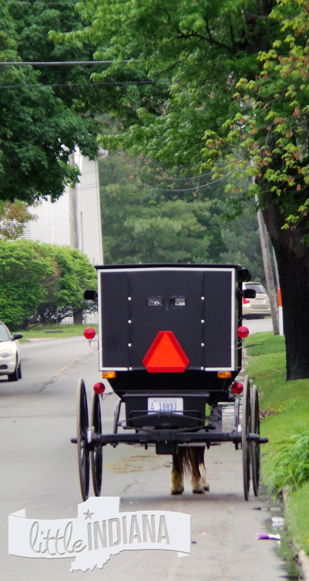Old Order Amish in Middlebury Indiana