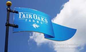 Fair Oaks Farms Dairy in Fair Oaks, Indiana