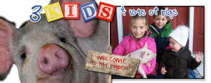 Indiana Blogs: 3 Kids and Lots of Pigs