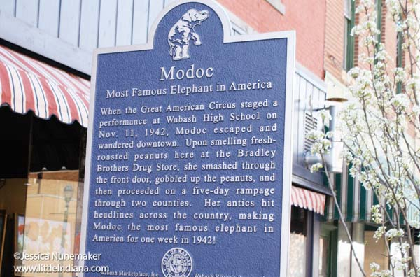 Modoc's Market in Wabash, Indiana Historical Plaque