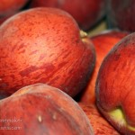 Indiana Apple Orchard: Skiles Orchard and Farm Market Tables Peaches