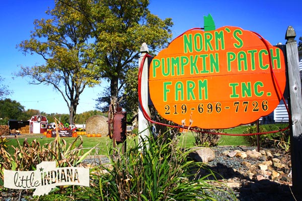 Norm's Pumpkin Patch in Lowell, Indiana