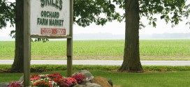 Skiles Orchard and Farm Market in Rossville, Indiana