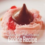 Cherry Blossoms Cookie Recipe