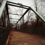 Hendricks County Bridge: Twin Bridges