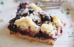 Blueberry Lemon Bars Recipe
