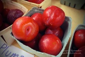 Doud Orchards: Denver, Indiana