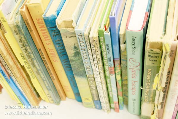 Thriftalicious Resale Shop in Wabash, Indiana Vintage Books