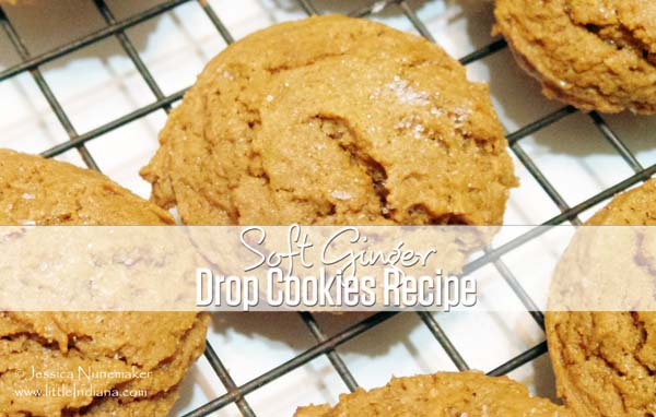 Soft Ginger Drop Cookies Recipe