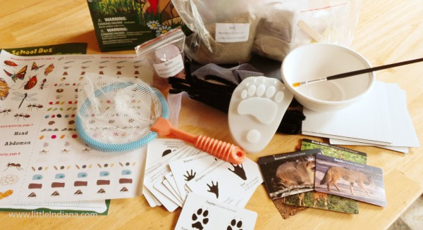 Magic School Bus Science Kit: Exploring the Wonders of Nature Kit