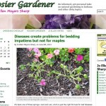 Indiana Blogs: Hoosier Gardener