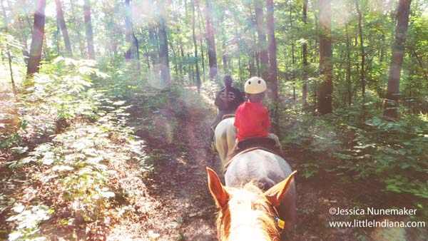 Froehlich's Outfitter and Guide Horse Rides in Cannelton, Indiana On the Trail in the Hoosier National Forest
