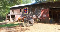 Froehlich's Outfitter and Guide Horse Rides in Cannelton, Indiana Barn
