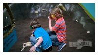 Indiana State Museum in Indianapolis, Indiana: Ice Age Exhibit