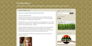 Indiana Blogs: Fortville Mama