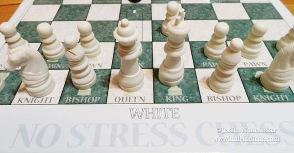No Stress Chess by Winning Moves Games for Family Game Night