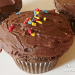 Best Chocolate Chocolate Chip Cupcakes Recipe