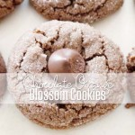 Chocolate Orange Blossom Cookies Recipe