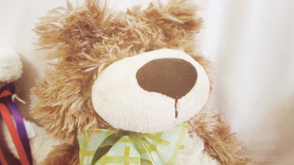 Jordan's Florist Rensselaer Indiana Adorable Stuffed Bear