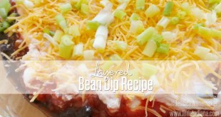 Easy Layered Bean Dip Recipe