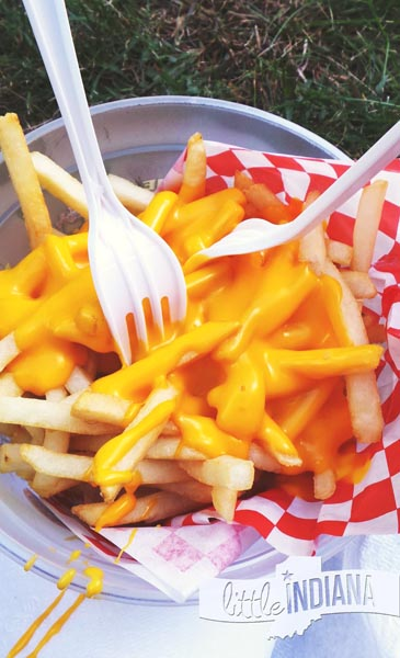 Cheese Fries from an Indiana Festival