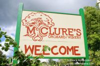 McClures Orchard and Winery in Peru, Indiana