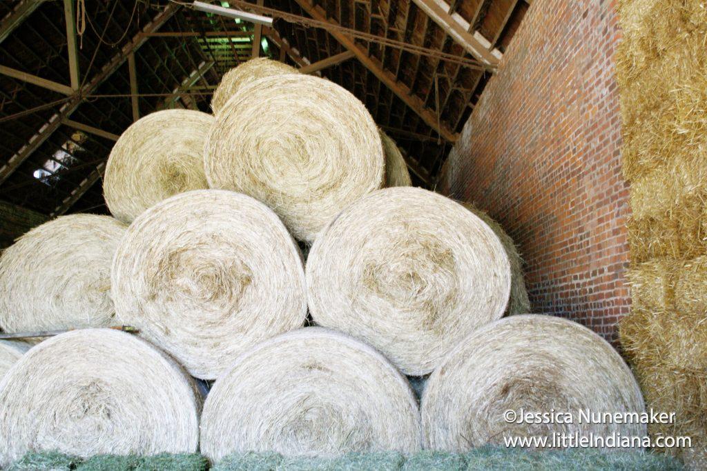 Michaela Farms in Oldenburg, Indiana