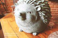 Hedgehog Music Showcase in Arcadia, Indiana