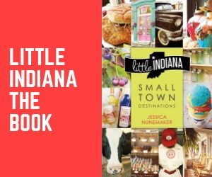 Buy Little Indiana Book